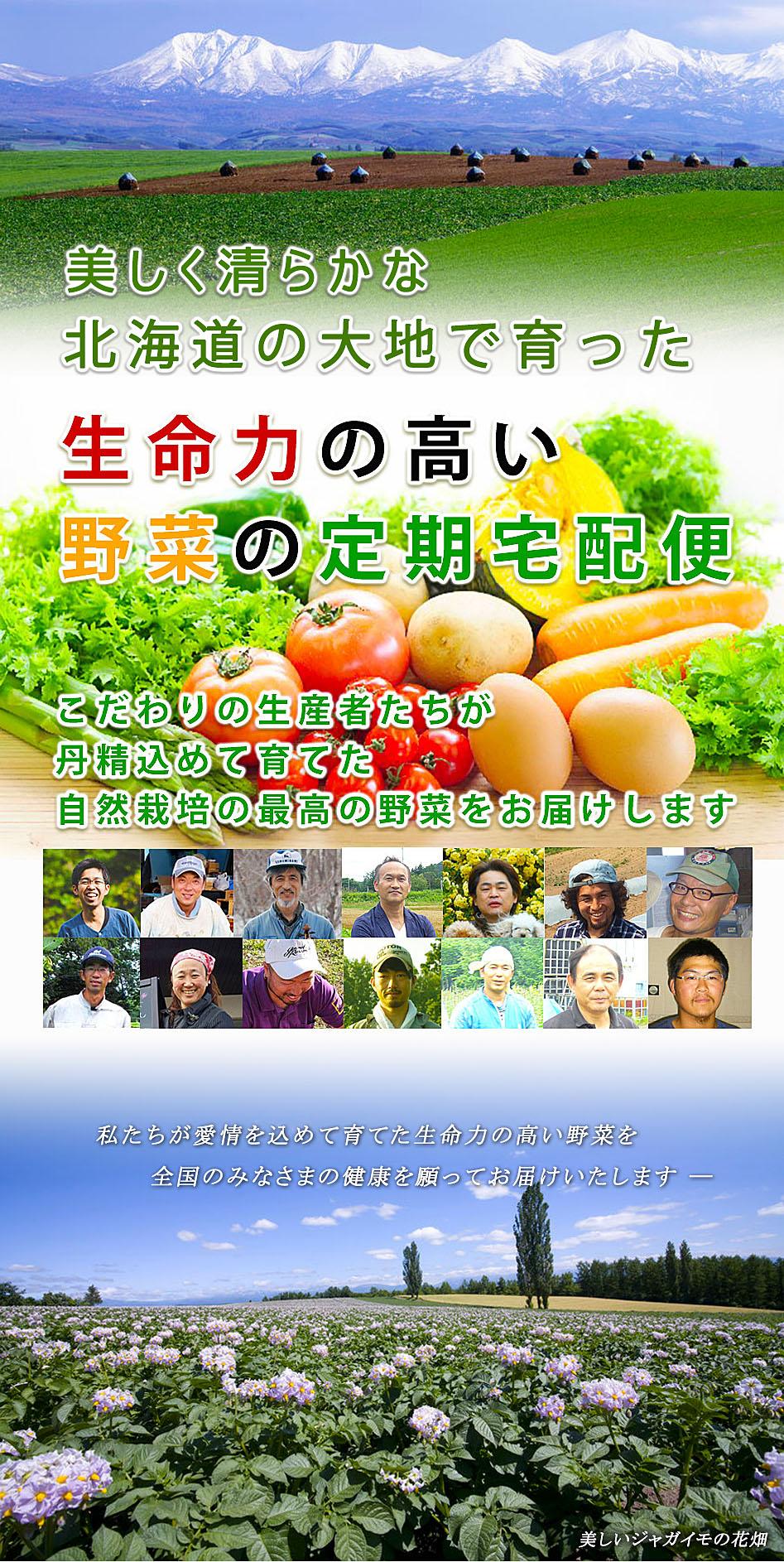 無肥料無農薬野菜の宅配便