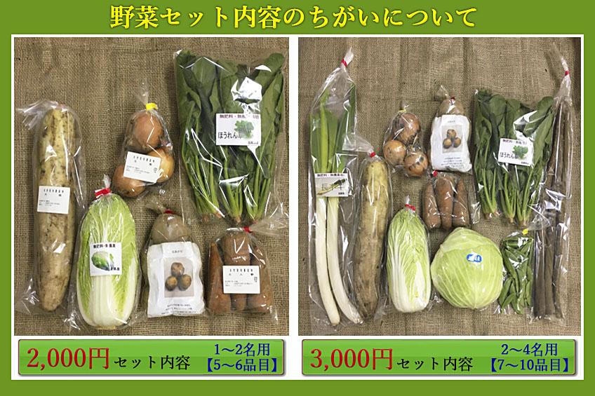 商品セット内容の違い(2千円と3千円)